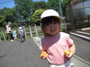 ちびっこらんど七里園 保育園  こども公園遊び写真